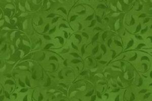 Climbing Vine Medium Green