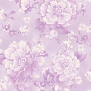 Perennials Violet