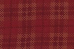 Wool & Needle Flannel II Warm Red