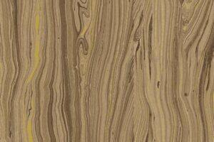 Sandscapes Mocha 20474M 38
