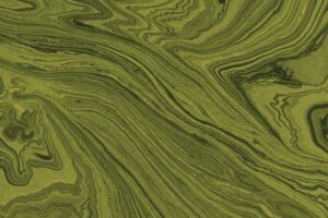 Sandscapes Moss 20475M 77