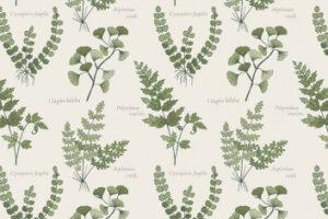 The Botanist  5052 11