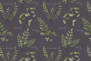 The Botanist  5052 13