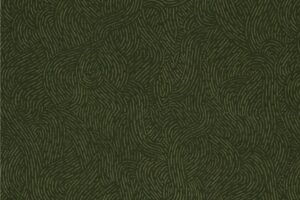 Flannel Seacoast Olive