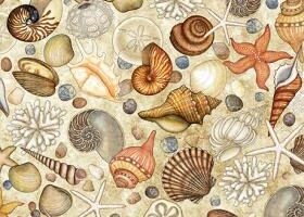 Ocean Oasis Shells Dark Cream 25833 E