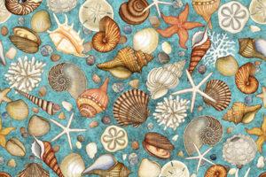 Ocean Oasis Shells Light Lagoon 25833 Q
