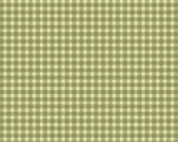 Beautiful Basics Flannel White & Green Check