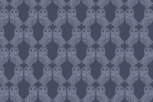 Owls on Midnight  6005 93
